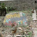 Nepal_111