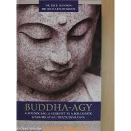 Dr. Rick Hanson - Dr. Richard Mendius: Buddha agy (CD melléklettel)